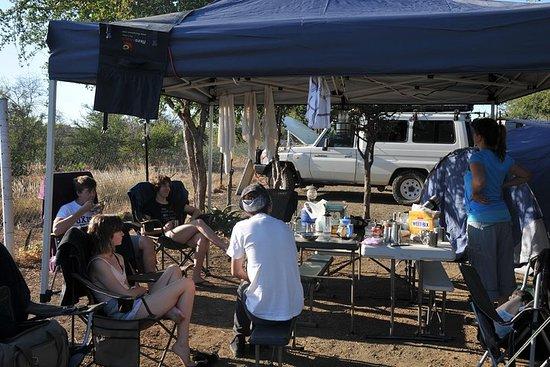 Safari no Parque Kruger - Viagem de...