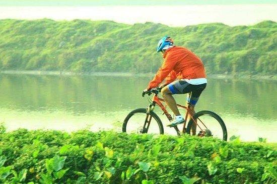 Fahren Sie die Kolkata-Feuchtgebiete...