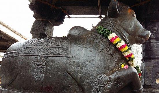 Nandi: The Bull as a companion of Shiva