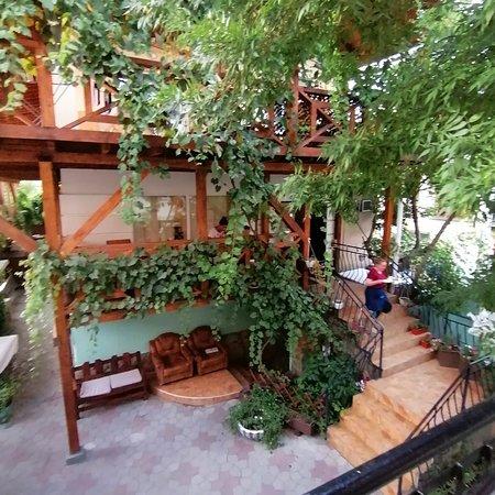 Зелёная территория внутри базы отдыха, Всё очень красиво, уютненько, можно обедать прямо во дворе и любоваться!