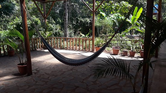 Matagalpa Department, Nicaragua : Bamboo covered terrace, Dining or see breathtaking views of mountains hearing the Howler Monkeys, birds and butterflies