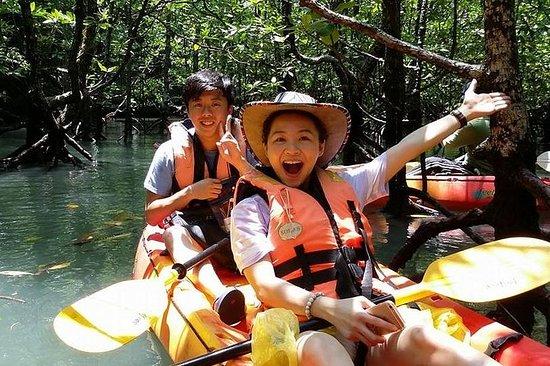 ランカウイ島マングローブの森カヤックツアー