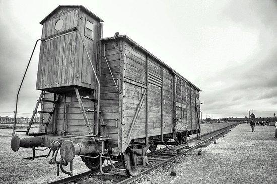 Auschwitz-Krakow tours