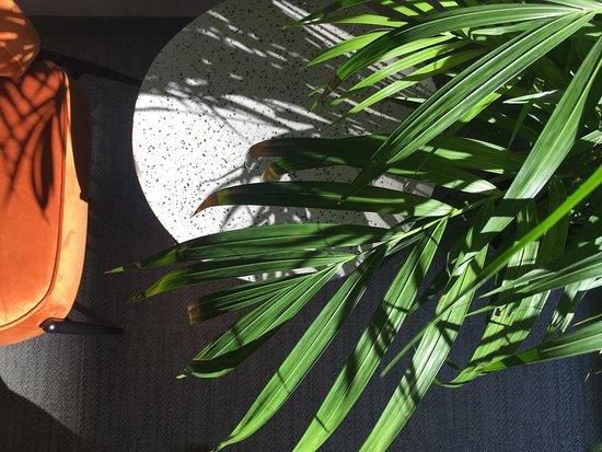 MD MODERN HOTEL - Jardines Espacios comunes: Recepción Nuevo diseño moderno, actual, funcional, cáildo y confortable