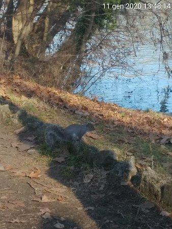 Un sabato nel parco