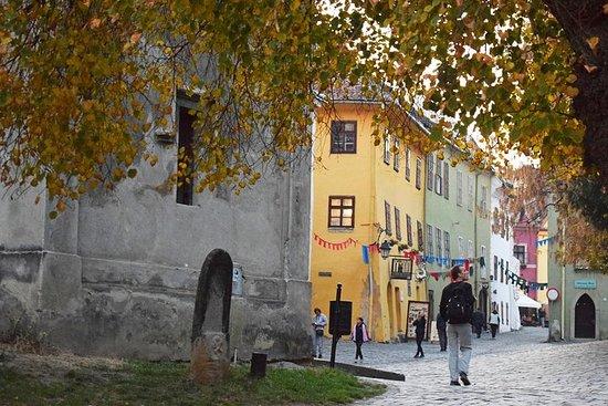 Tour di 10 giorni in Romania (partenza privata e garantita, da