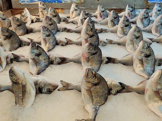 魚売り場 2