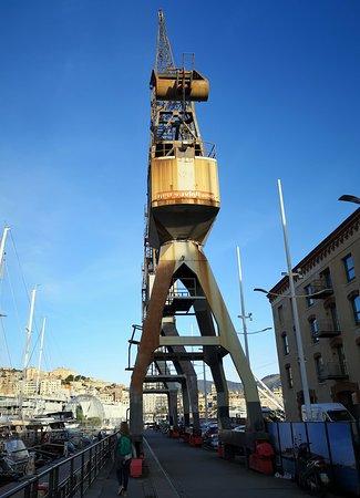 old port genua