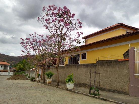 Alagoa Grande, PB: Ipês Rosa, na chegada do Maria da Pá Virada Bistrô
