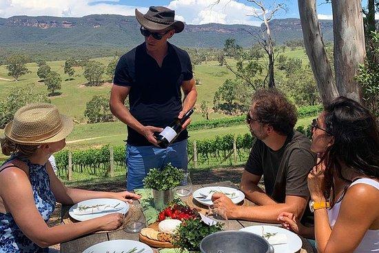 Luksus Blue Mountains-tur med Aussie BBQ-lunsj og vinsmaking
