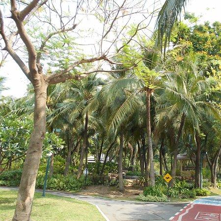 Benchakitti Park
