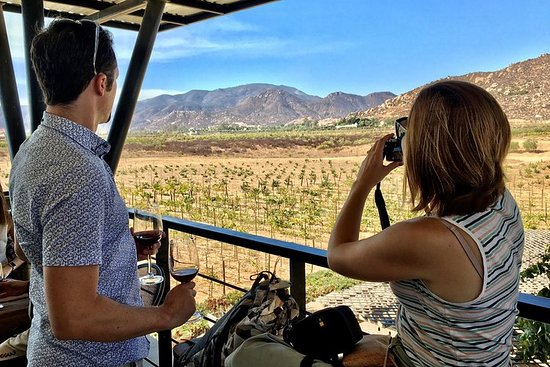 Luxury Private Wine Tasting Tour to...