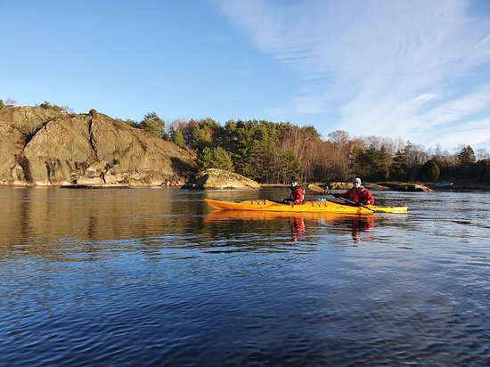 Lysekil, Suecia: Our 'Seal safari by kayak' runs during fall and winter. In April they will start having pups and we wouldn't want to disturb them or their young ones, do we?