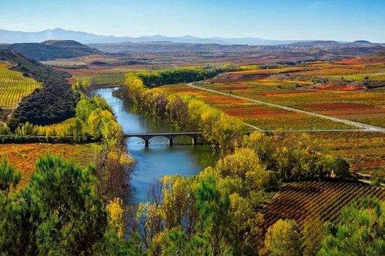 Recorrido vinícola por la Rioja Alta...