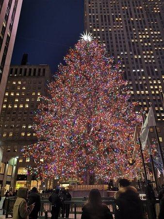 christmas tree at rockefeller center 2020