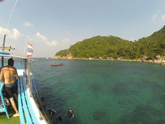 2 Fun Dives! - For Certified Divers: Dive site located on the north part of the island