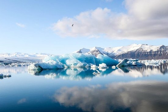 The Jökulsarlón Glacier Lagoon Tour
