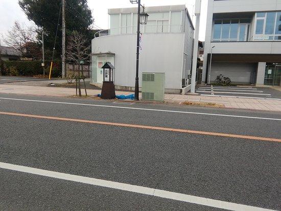 Matsunamiki no Arufukei Nikko Kaido