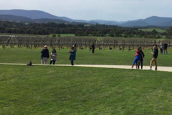 Yarra Valley wijnproeverij
