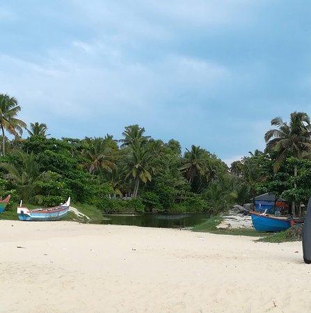 Nature in Kerala near the ocean