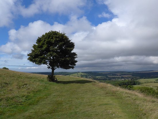 Views from Cissbury Ring
