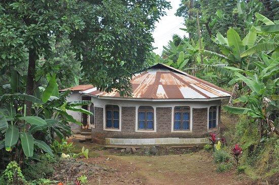 Alpha's Tours: Local building near Moshi coffee plantation