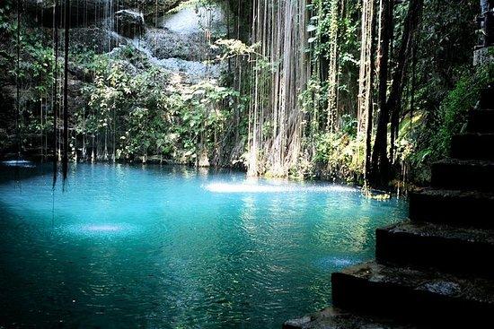Eksklusiv en dags privat tur fra Cancun...
