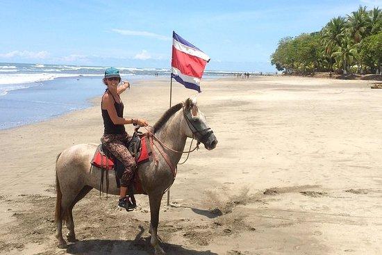 Small-Group Horseback Adventure van Jaco