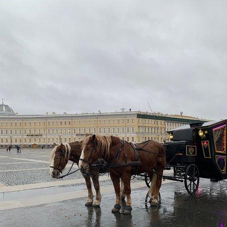 Очень красиво, обошли 3 этажа и на этом сильно устали 😅  Входной билет 300 рублей, а для студентов бесплатно, но нужно предъявить студенческий  Очень жалко лошадок, которые стояли под дождём 😟 Внутри прохладно 🥶