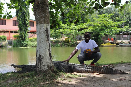 Accra - Cape Coast/Elmina Tour (The Return Experience): You can touch a scaly friend!