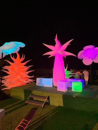 EDC Themed Company Event on the Lawn