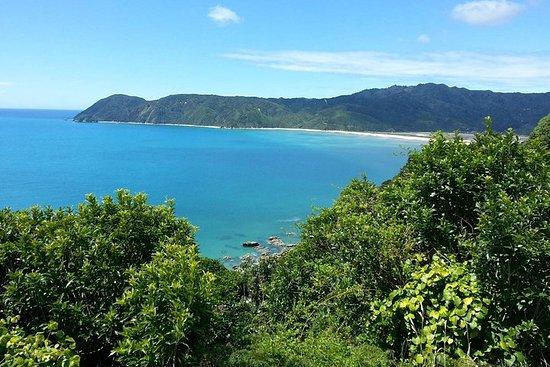 Golden Bay en un jour