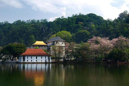 Circuit de 3 jours à Kandy Nuwara...