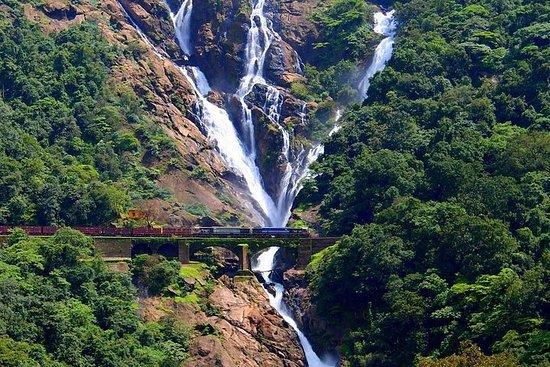 Dudhsagar waterfalls SIC tour with...
