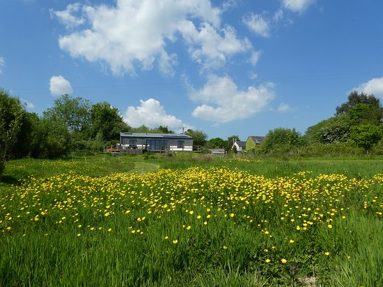 Balebarn Lodge, seen from its meadow in spring.