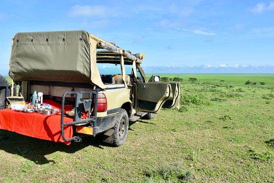 Spending Christmas in the Serengeti