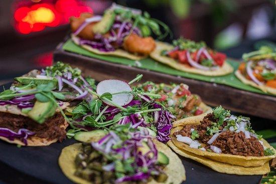 Trujillos Cantina De Selva - Tacos y Tostadas