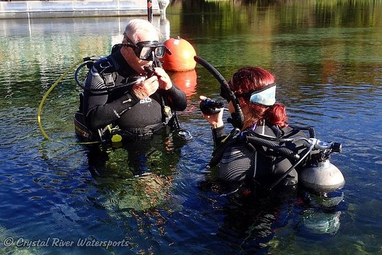 Try SCUBA Diving in Crystal River (Rainbow River Dive)