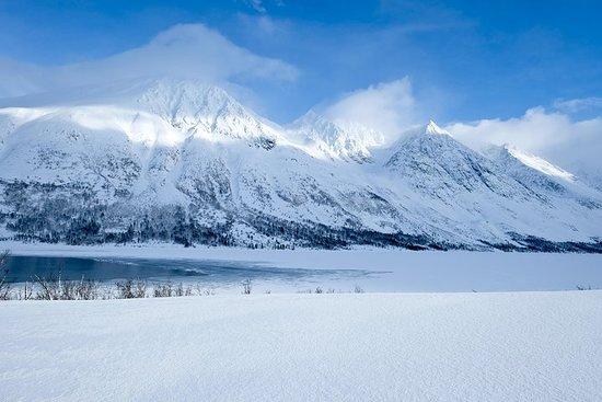 Passeio incrível pela paisagem do...
