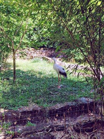 Entrada general al complejo GramadoZoo: Gramado zoo