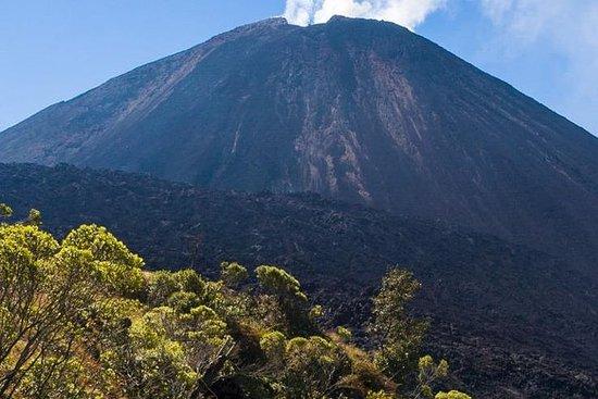 Visita el volcán Pacaya y las aguas...