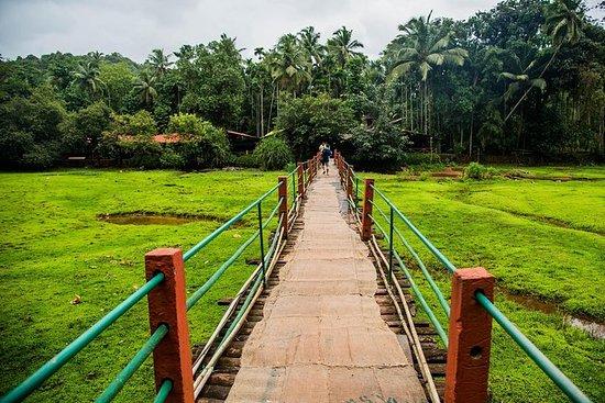A day Trip to Spice Plantation village