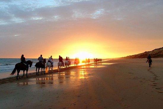 Coucher de soleil à cheval sur Doñana + visite d'El Rocio