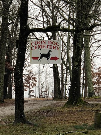 What a great side trip! This hidden gem is completely off the beaten path. So glad we visited.