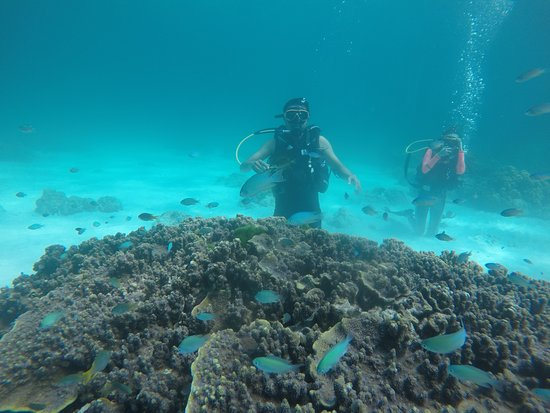 Phúket, Thajsko: Diving at Phuket