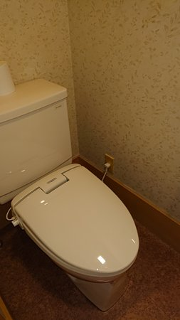 トイレ ウオシュレットではない