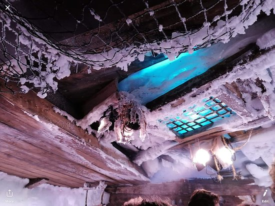 Xtracold Icebar Amsterdam and 1-Hour Canal Cruise: Ceiling