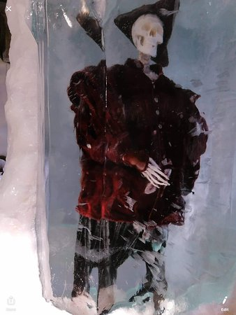 Xtracold Icebar Amsterdam and 1-Hour Canal Cruise: Frozen statues