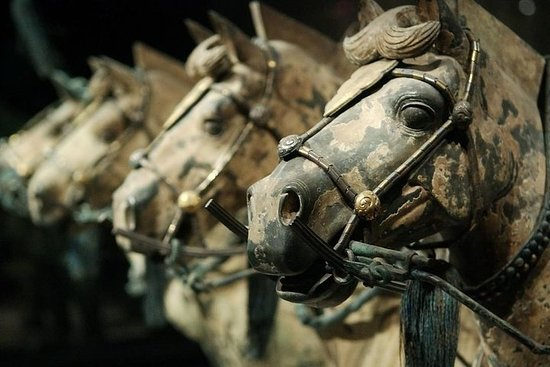 Zdjęcie Quick Tour to Xi'an Terracotta Warriors from Beijing by Air in One Day