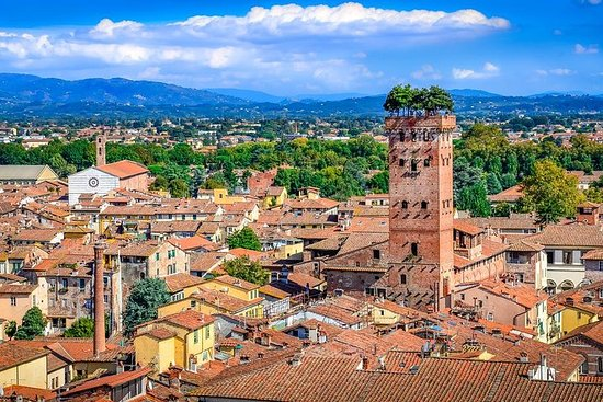 Full-Day Private Pisa and Lucca Tour...